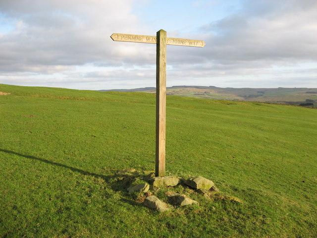 Pennine Way waymarker