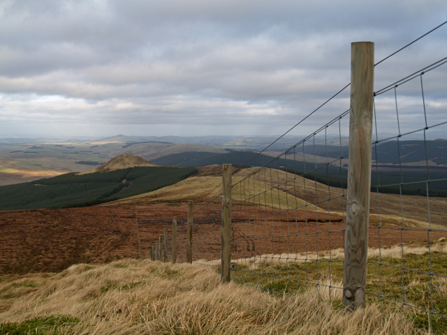 Fence, Greatmoor Hill
