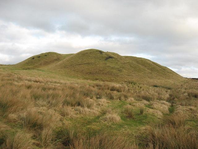 The 'Blue Heaps' near Bellingham