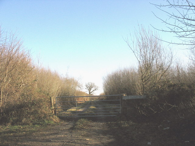 Gate leading to a track through Coed Bodfel