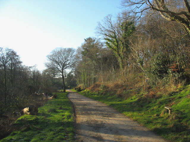 The main drive to Cefn Mine