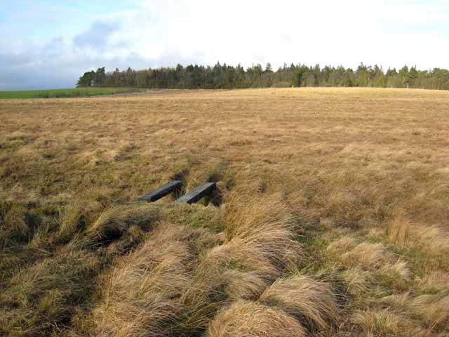 Moorland near Stowerhill