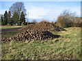 TL4884 : Harvested sugar beet in Coveney Byall Fen, Cambs by Rodney Burton