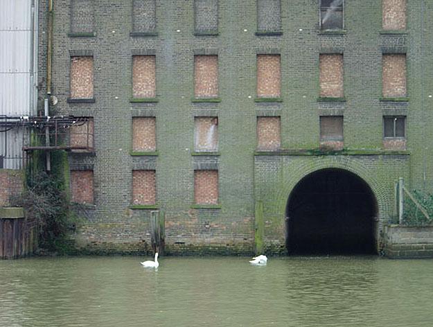Grain mill on the Nene at Peterborough