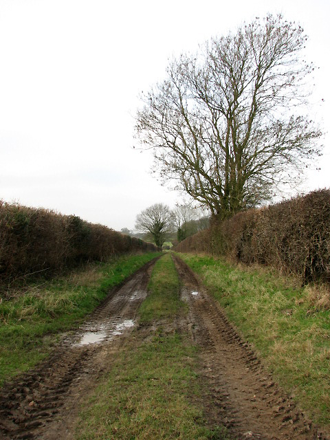 Farm track and public footpath