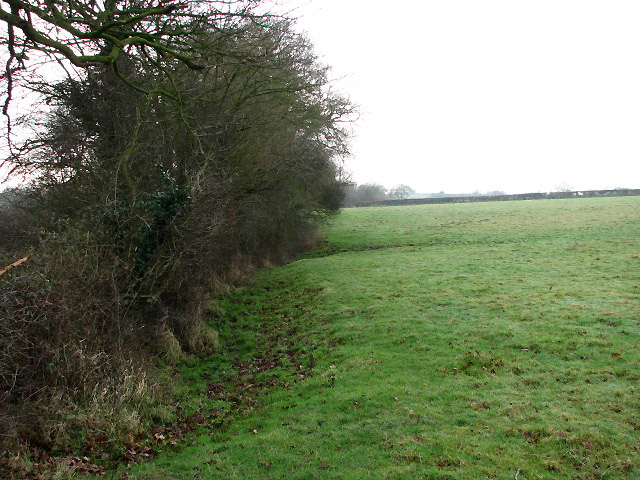 Looking west alongside a field boundary
