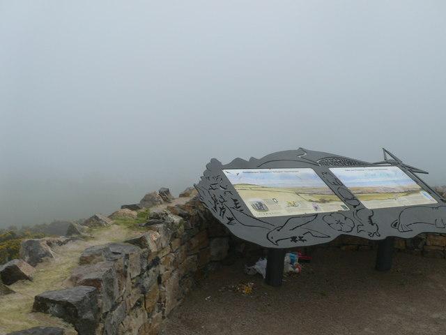 Gwaenysgor Viewpoint