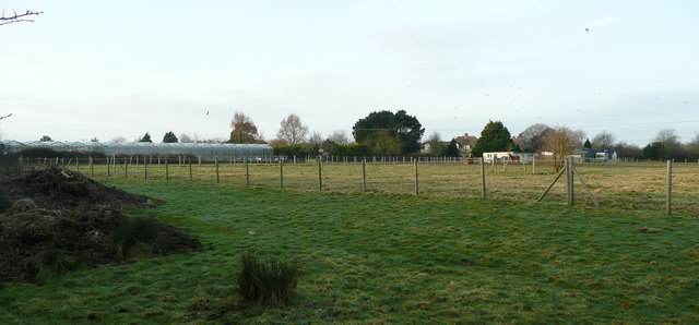 Glasshouses to the west of Boxham Lane
