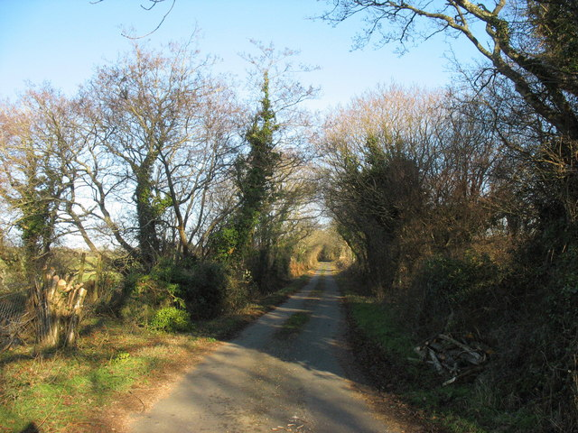 The lane to Gwnhinger near Coed Bodfel woodland