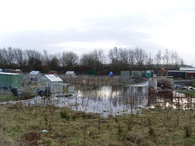 Flooding at Dalmuir allotments