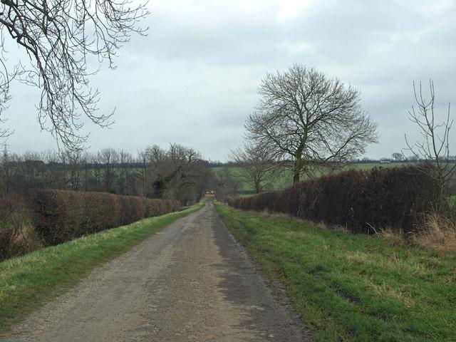 Bridge Lane in January