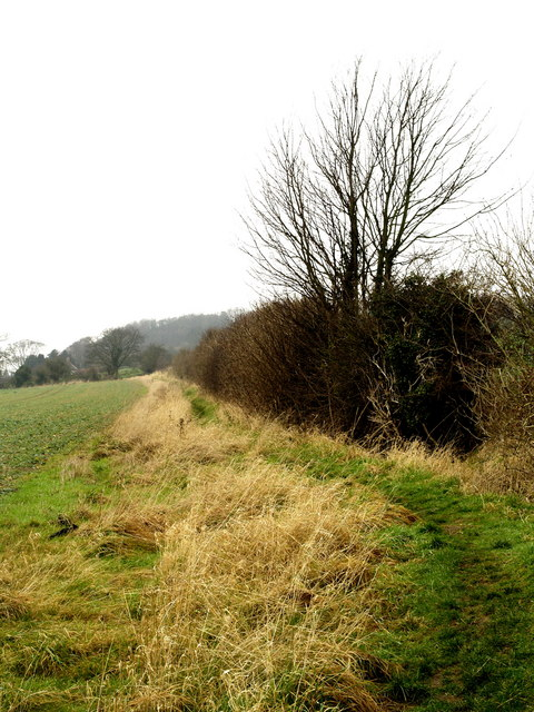 The Viking Way near Searby