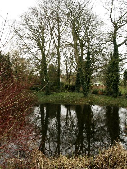 Searby Village Pond