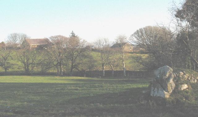 Ty Newydd and Y Mount