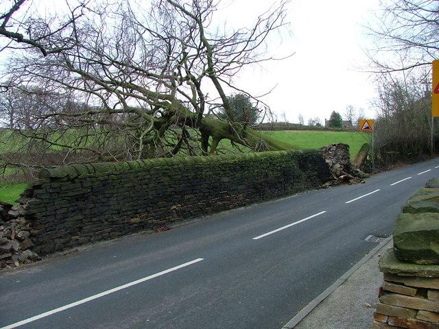 Hopton Hall Lane