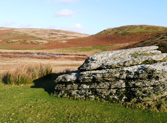 Moorland rock