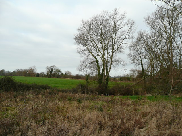 View west of Shipton Green