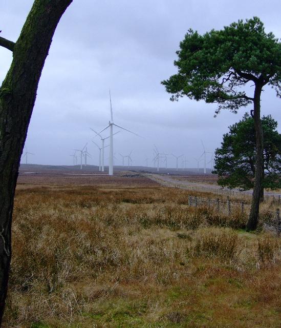 Black Law windfarm