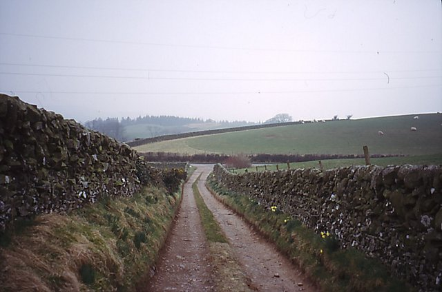 Driveway, Barbershall