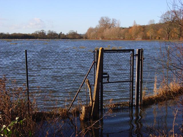 The Thames floodplain, Reading