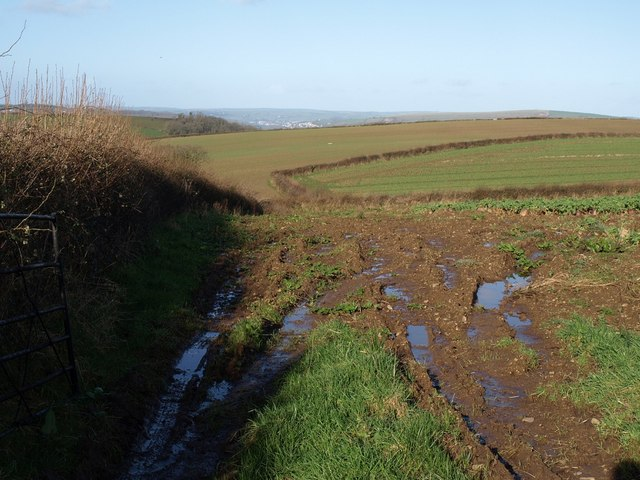 Fields west of Atherington