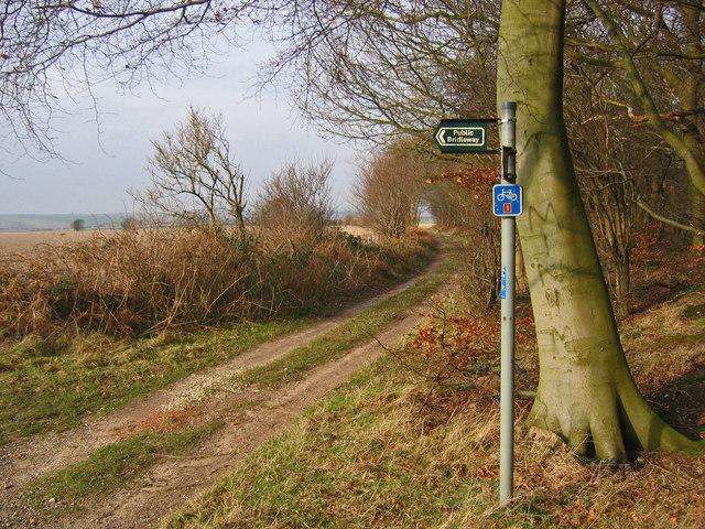 Bridleway, Hendale Wood