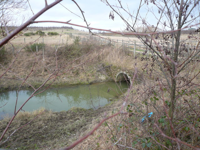 Footpath crossing brook