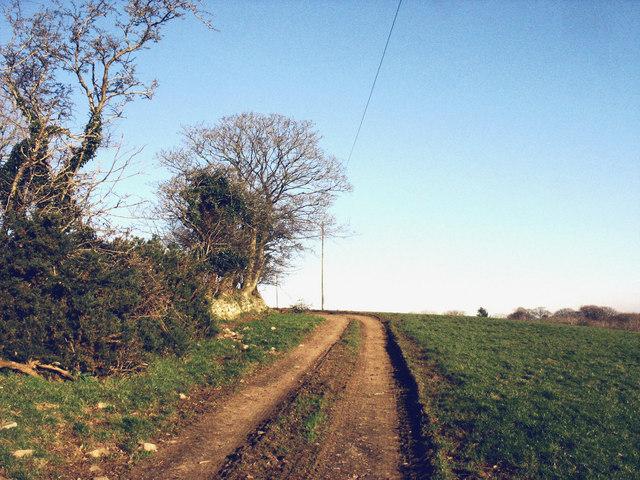 Unmetalled track beyond Gwnhinger