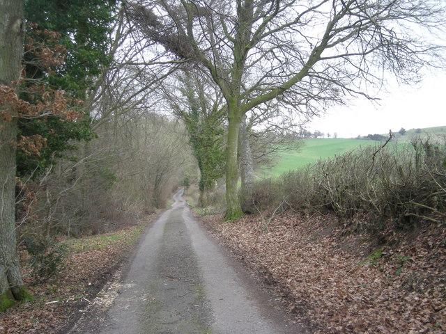 Lane beside Horderley Wood