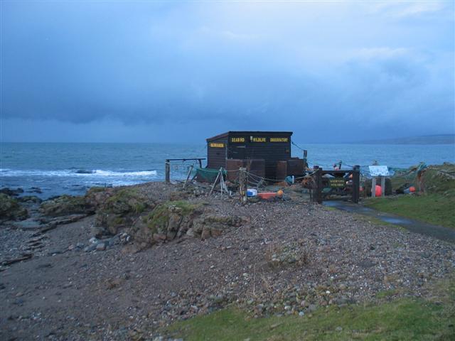 Machrihanish Seabird Wildlife Observatory