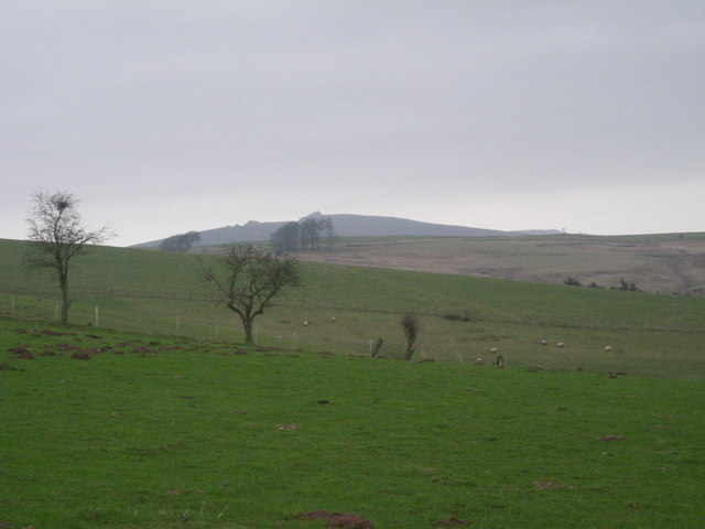 Grazing land on Norbury Hill