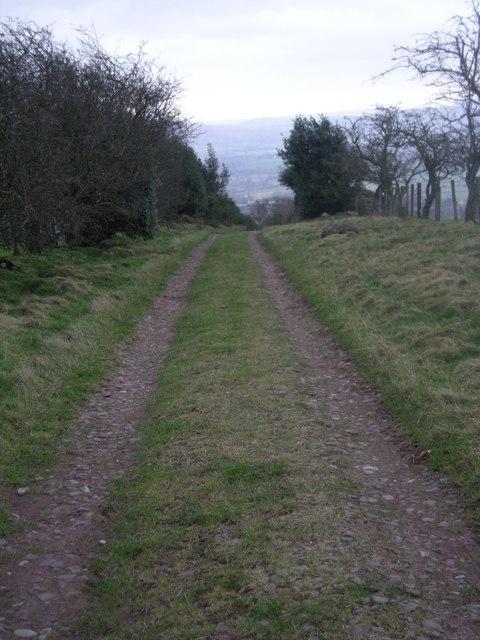 Farm track on Norbury Hill