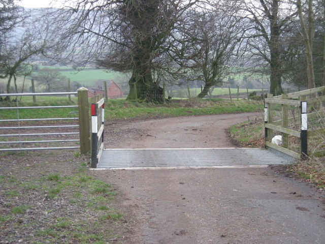 Cattle grid on Norbury Hill