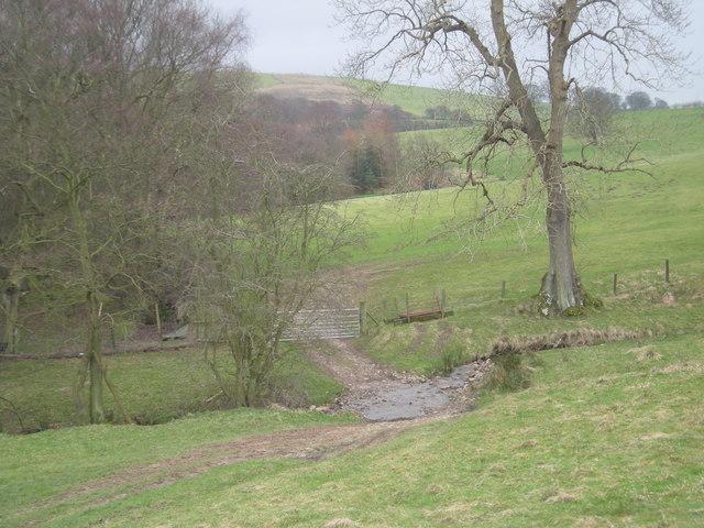 Farm track & stream