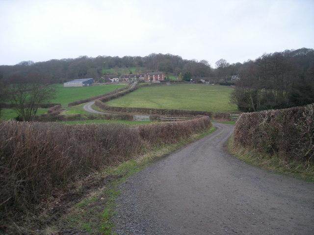 Driveway to Nills Farm