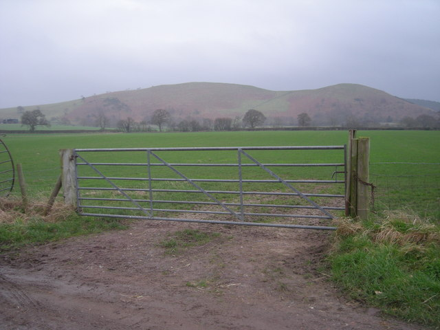 Gate to sown field