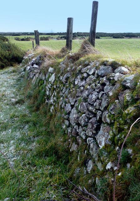 Old stone dyke