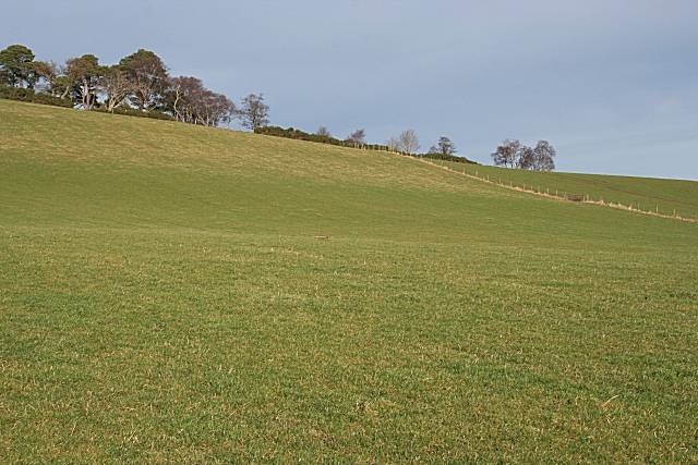 Ten Rood Hill (3)