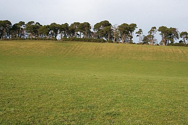 Ten Rood Hill (2)