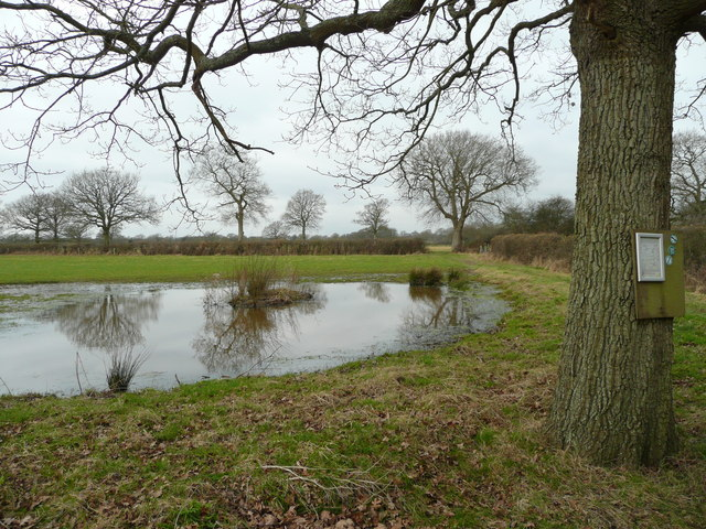 Pond and permissive path