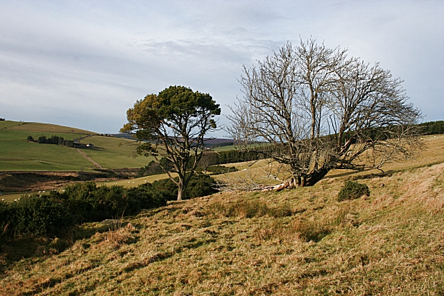Looking west from Lower Hillside