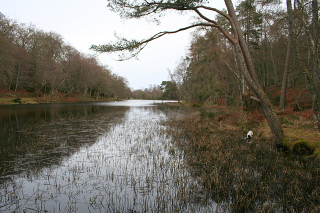 Eastern bank of Geddes Fishery