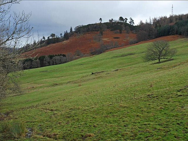 Pastureland on the northern slopes of Barr Dubh