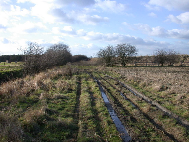 Fieldside track near Waterbeach Airfield