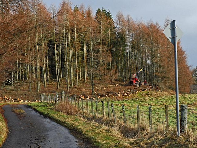 Forestry operations near Glentarf on the Glascorrie road