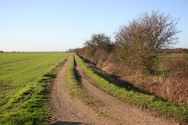 Mary Land track