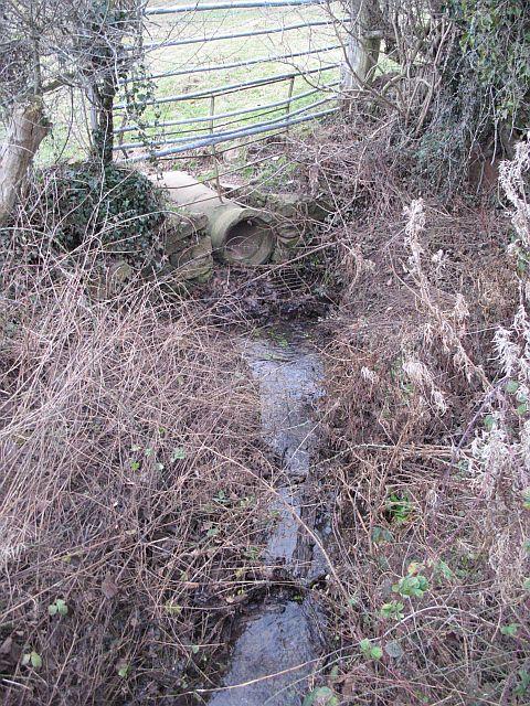 Culverted Brook