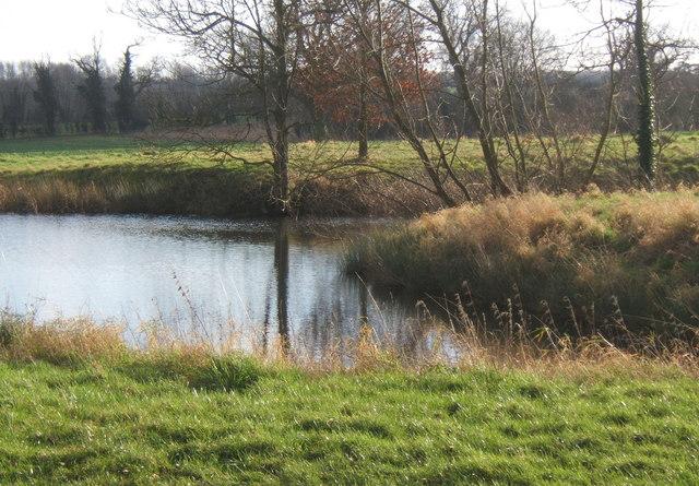 Pond close to Cooper Road