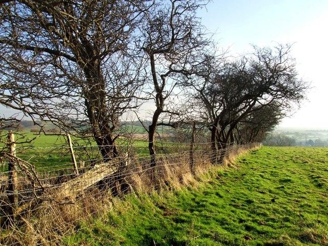 Footpath to Hundleby, Old Bolingbroke