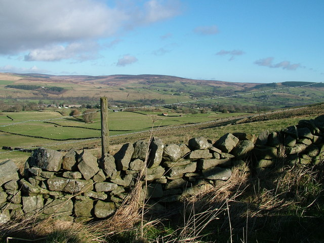 Fellside near Mickleton